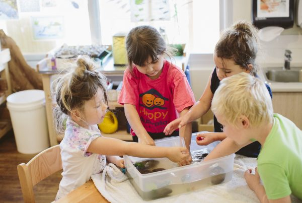 Inspira Kids School Readiness